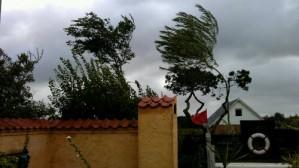 Storm © 2011 - Iminhave.dk