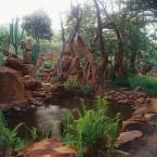Geoffrey og Wendy Armstrongs Afrikanske have - Billeder fra VISI