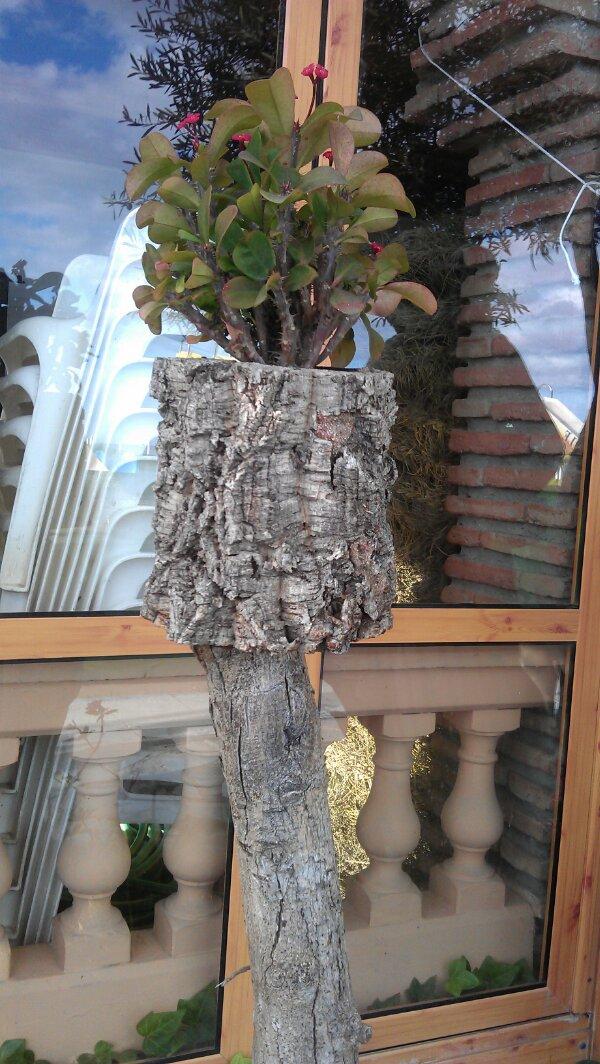 plantepotte af dødt træ © iminhave.dk