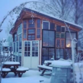 Hjemmebygget drivhus, i en varm tid uden sne…