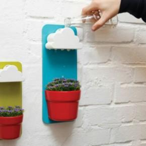 Fyld vand i skyen, indendørs have design