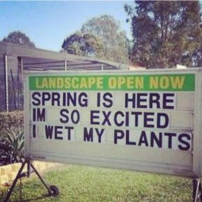 Reklame idé til plantecentret