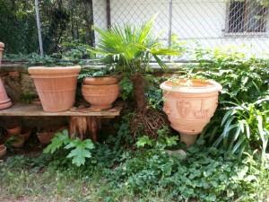 Palmer og krukker i pottemagerens gårdhave i Torri del Benaco