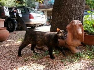 Katten og terracotta hunden